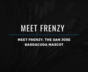 Meet Frenzy