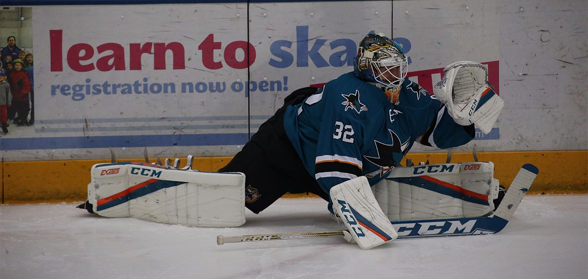 Barracuda make a pair of roster moves