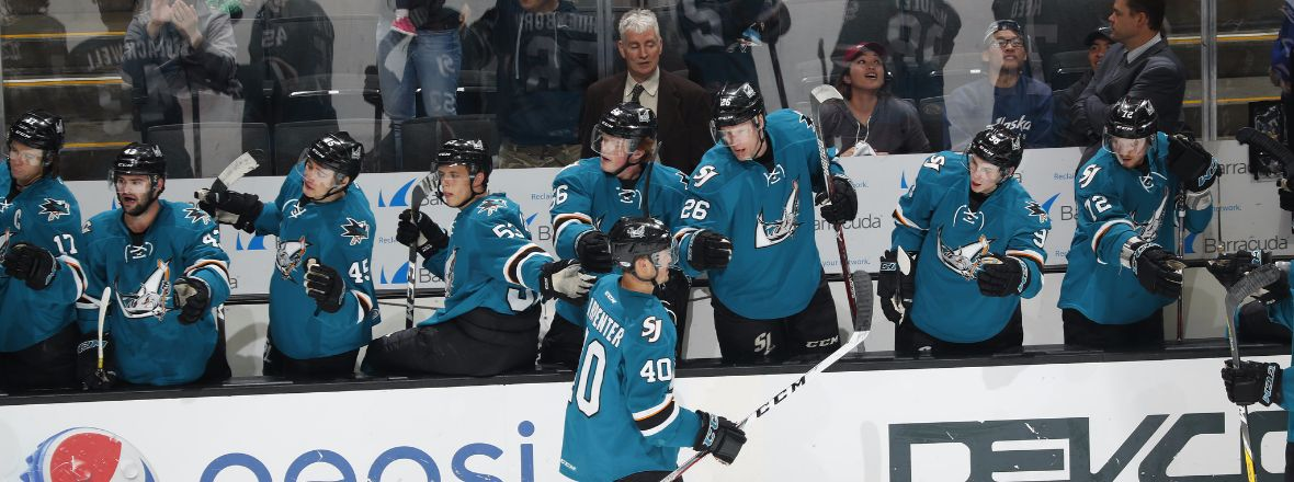 SHARKS ORGANIZATION FINDING SUCCESS AT ALL LEVELS