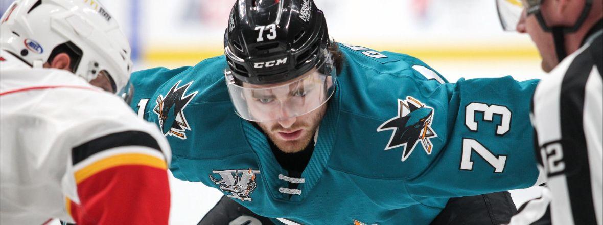 28 TEAMS TO PARTICIPATE IN 2020-21 AHL SEASON
