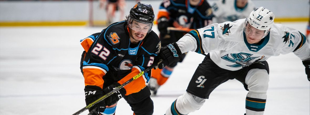 BARRACUDA JUMP OUT TO EARLY LEAD, DOWN GULLS 4-1