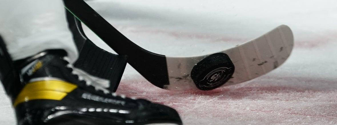 AHL ANNOUNCES PLANS FOR 2021 PLAYOFFS