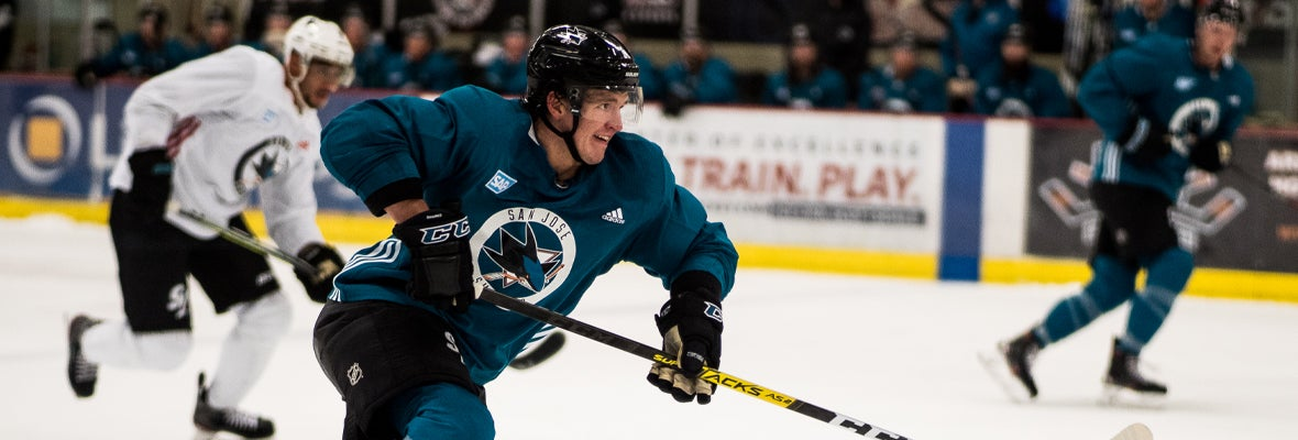 10 Barracuda Alum make Sharks Roster and Taxi Squad