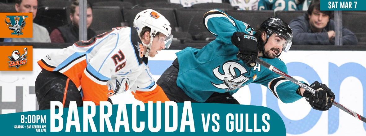 GAMEDAY: BARRACUDA VS GULLS