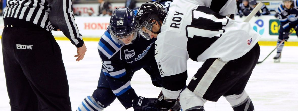 BARRACUDA SIGN MARC-OLIVIER ROY TO A PTO