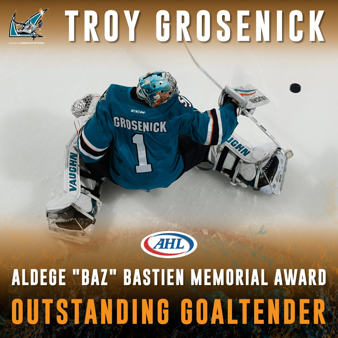SJB_AHL-Awards_1100x1100_Grosenick-BestGoalie.jpg