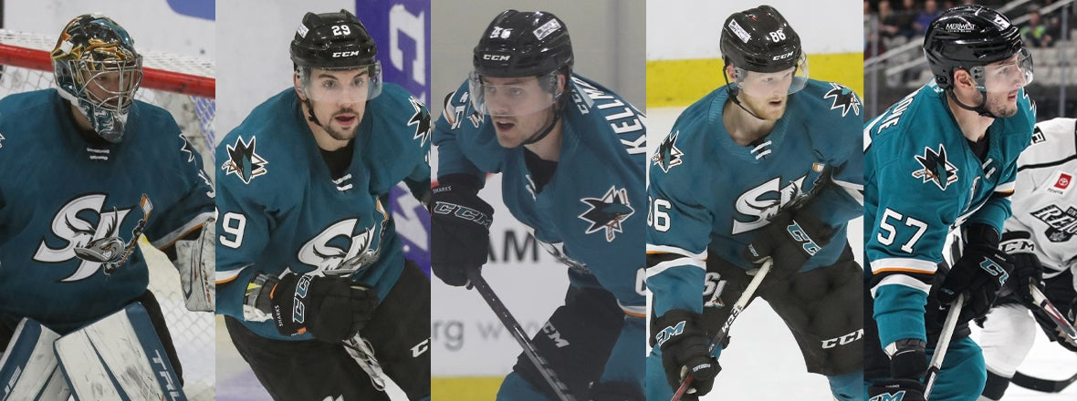 SHARKS RECALL FIVE PLAYERS FROM BARRACUDA