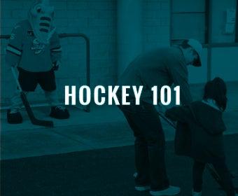 hockey-101.jpg