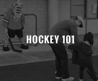 hockey101landingpage.jpg