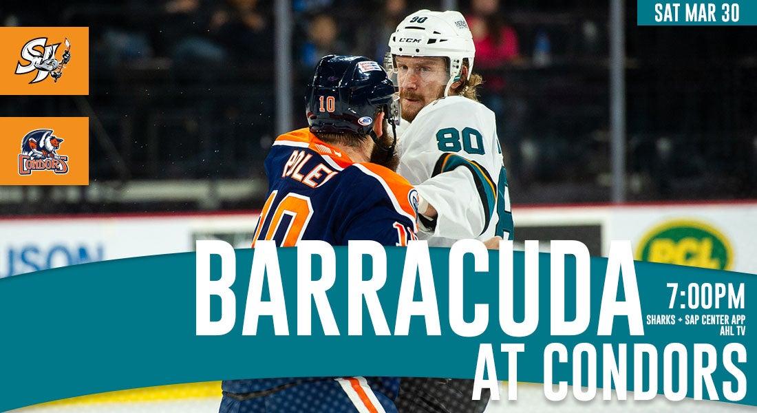 81fed6415ae News | San Jose Barracuda